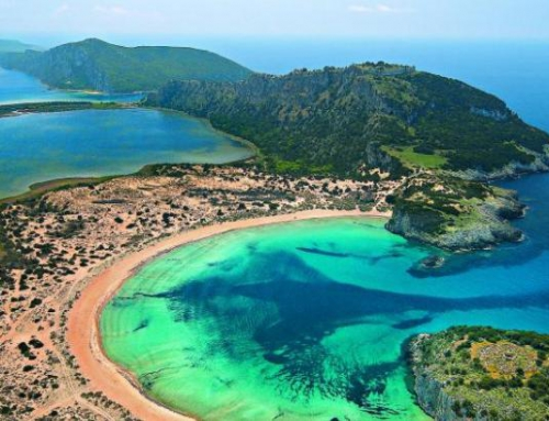 Elaia: a stunning coast forest in Messinia
